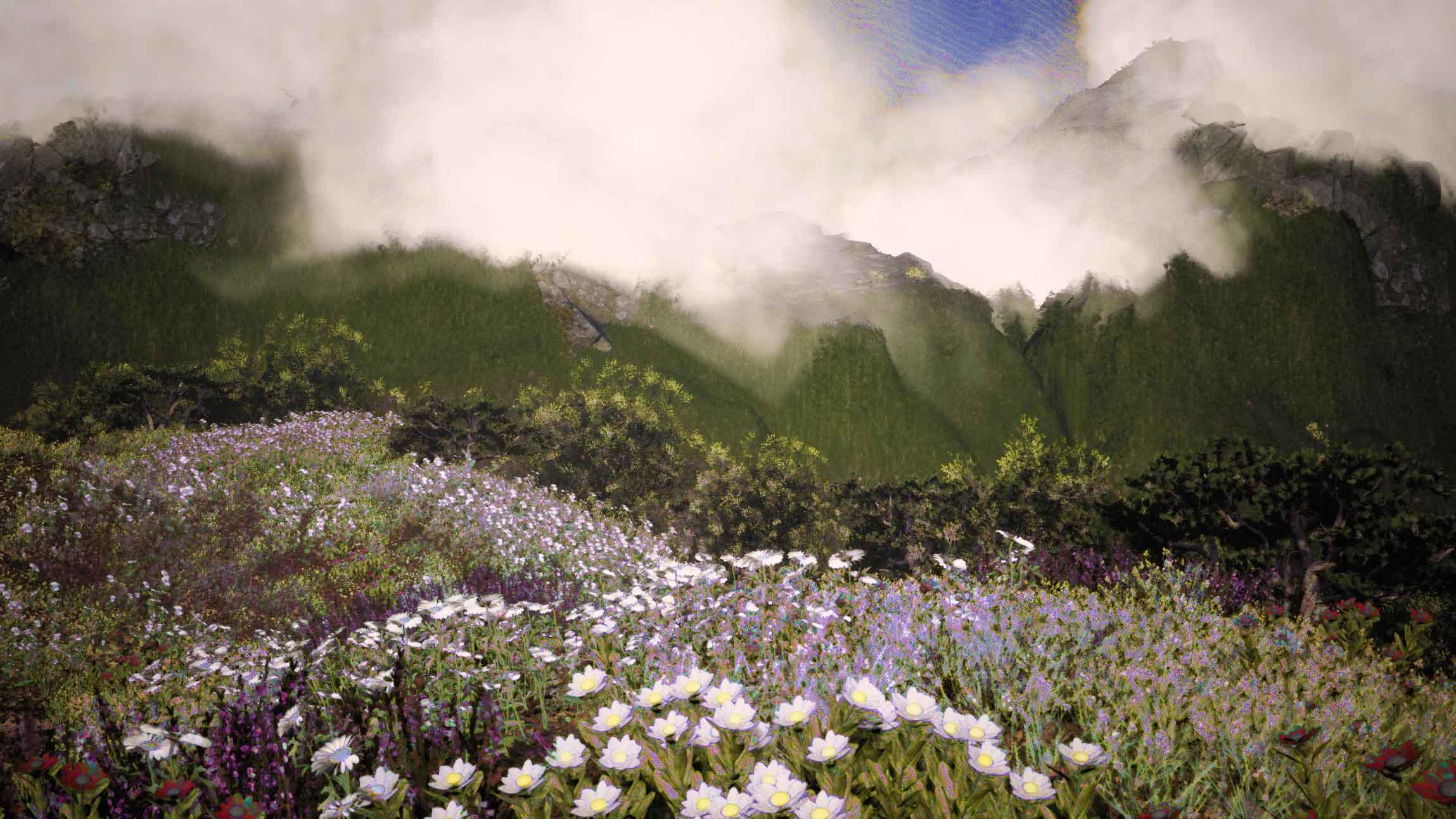 Resurecting The Sublime_Leucadendron_Landscape
